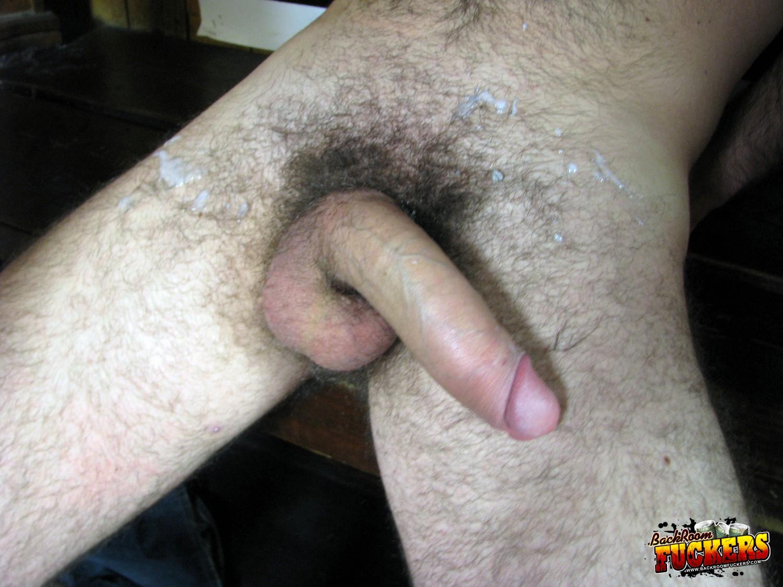 unusually large male sex organs