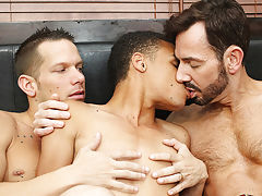 young boys gay torrents