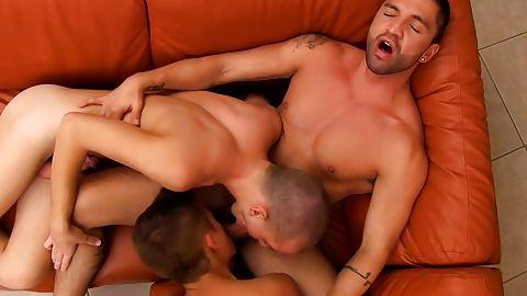 рое гей порно