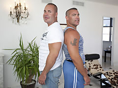 dutch bear gay photos