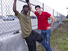 gay interracial video trailer